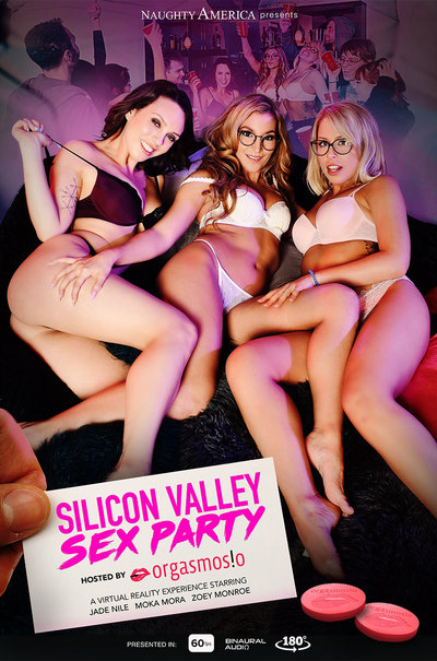 NaughtyAmericaVR Silicon Valley Sex Party